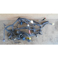 Main Wiring Harness 51014452A